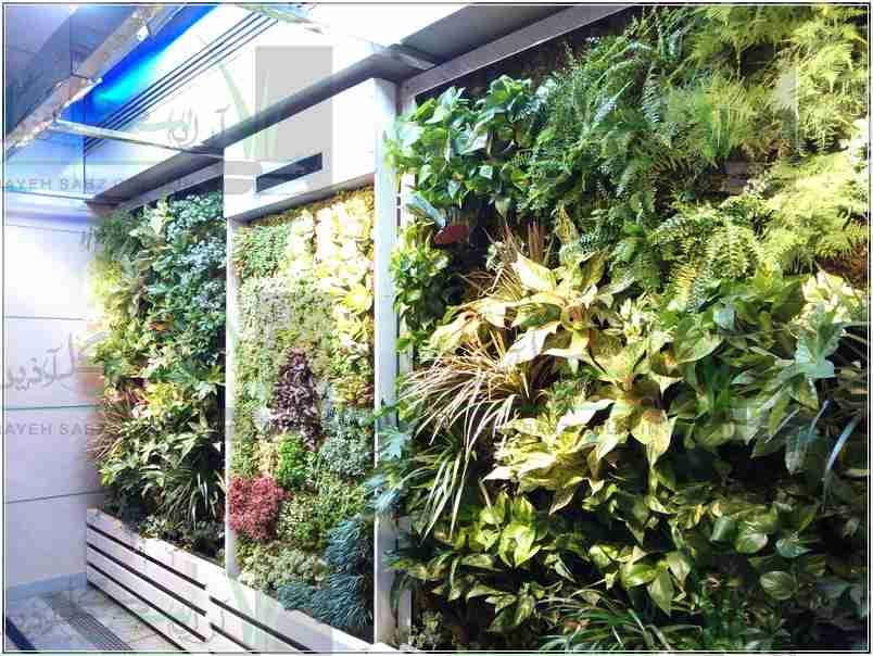 دیوار سبز فرودگاه امام خمینی