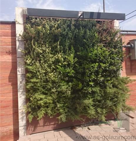 دیوار سبز هتل نیلوفر