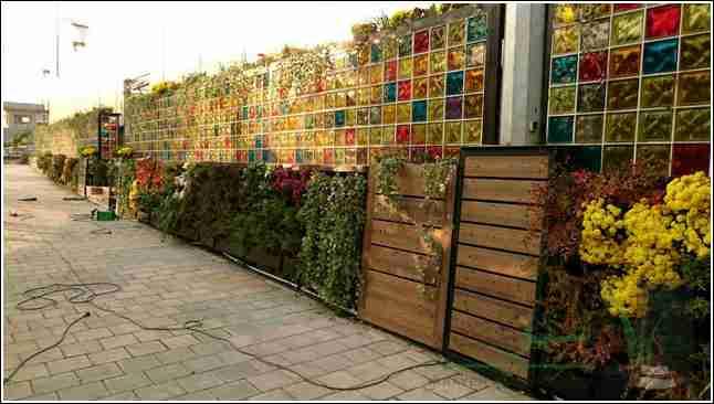 دیوار گلخانه شهرداری لواسان
