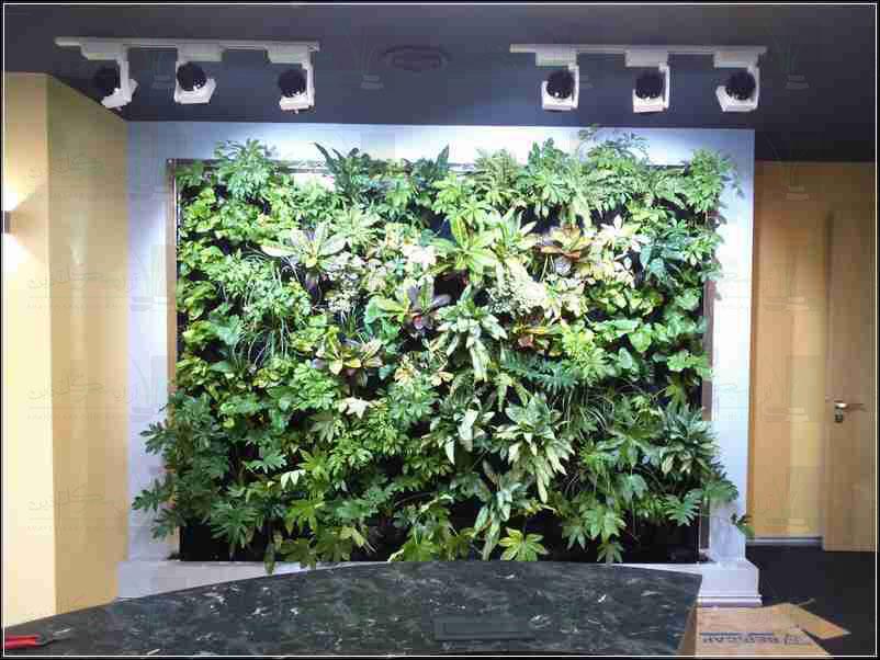 دیوار سبز شرکت ملت
